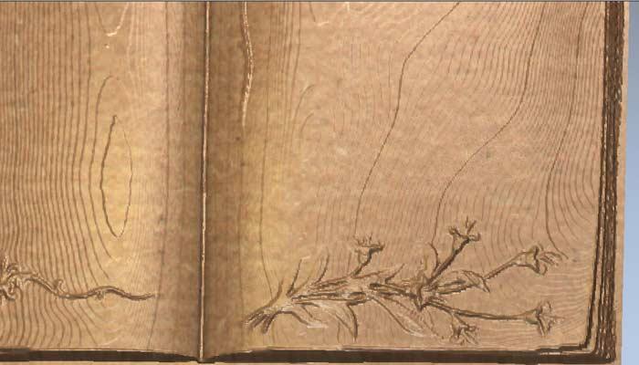 Книга с цветами STL модель