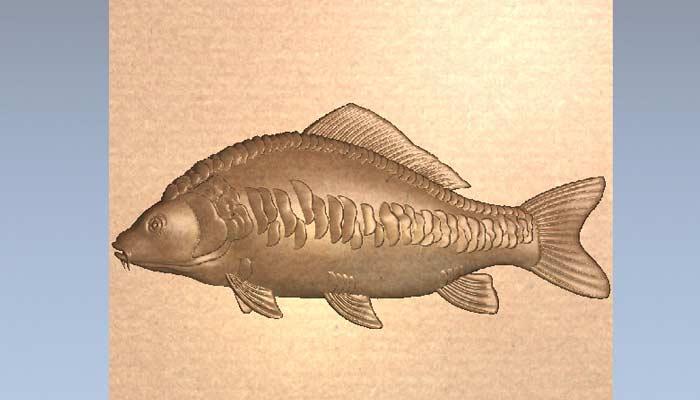 Рыба Карп 3D модель в STL формате